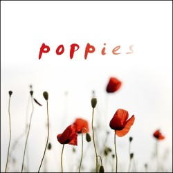 2015POPPIES_AMP