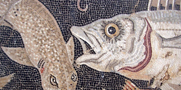 Mosaic of fish