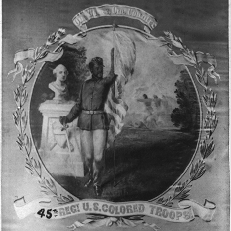 Image David B Bowser One Cause Country 45th Regt