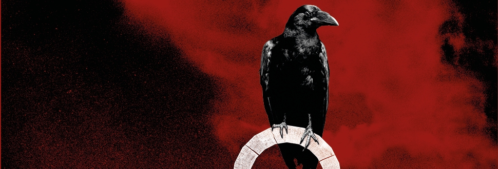 Poster featuring a raven