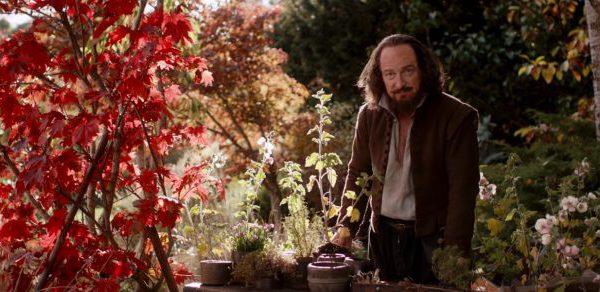 A man stands in a garden.