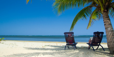 A palm tree and deckchairs on a white sandy beach.