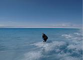 Sampling a lake on the Greenland Ice Sheet