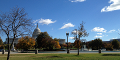 A photograph of Washington DC, November 2013