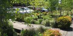A photograph of the green streets initiative in Portland, Oregon (Mount Tabor Middle School car park)
