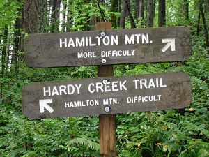 A photograph of the choice of hiking routes
