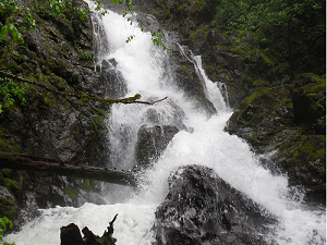 A photograph of a waterfall on the Hamilton Mountain trail