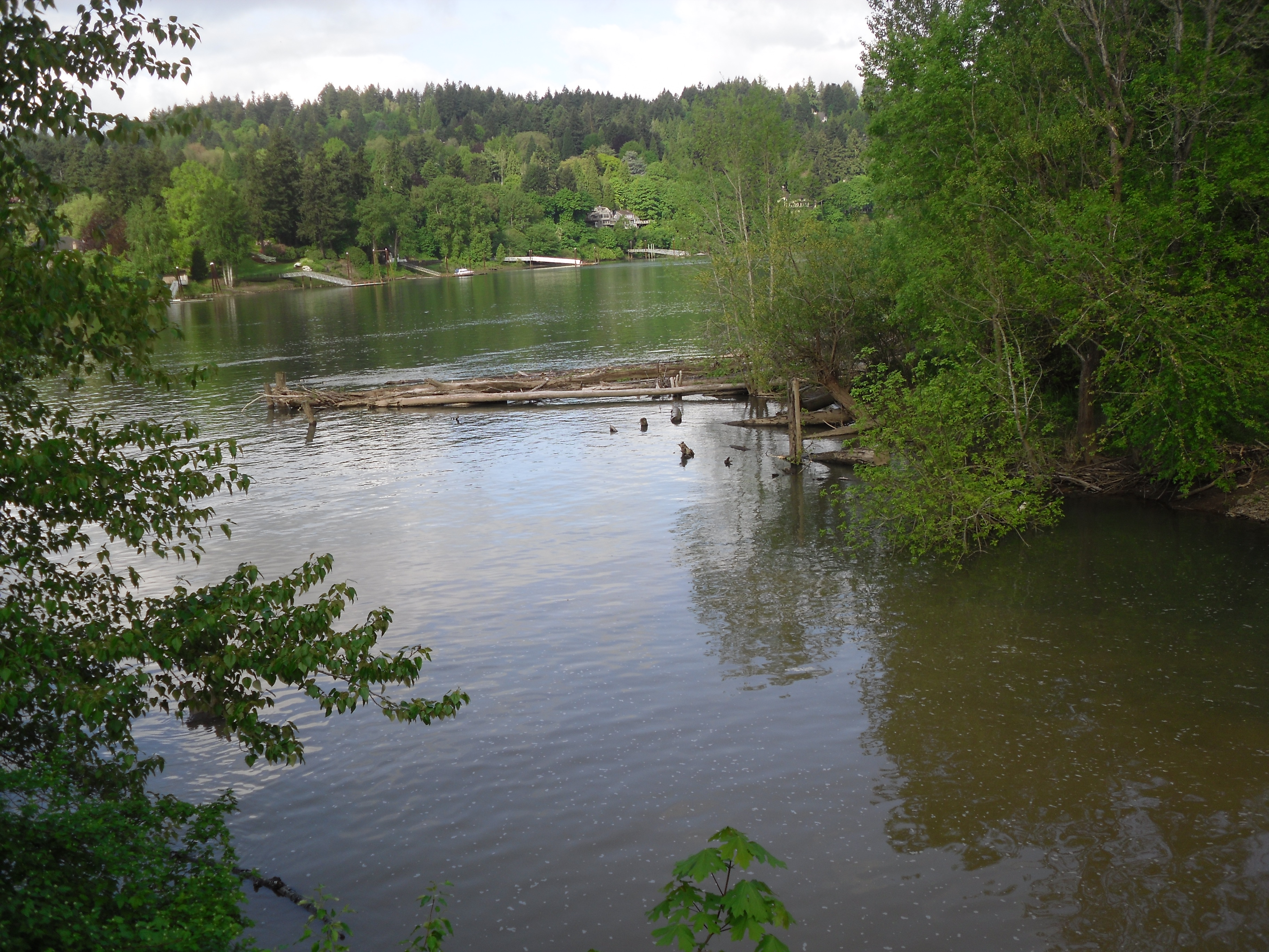 A photograph of the confluence of Johnson Creek and the Willamette River, Portland, Oregon