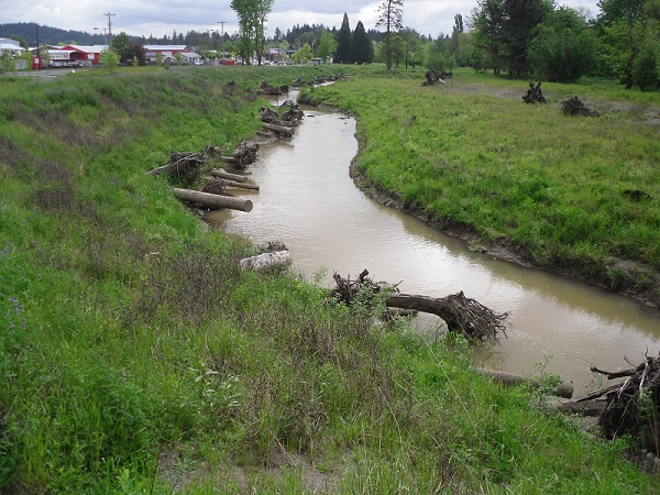 A photograph of part of the East Lents Floodplain Restoration Project, Portland, OR. Photo. E. Lawson.