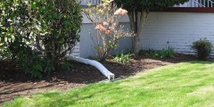 A photograph of downspout disconnection in Portland, Oregon.
