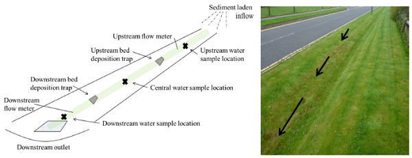 Schematic swale diagram (D. Allen et al., 2015)