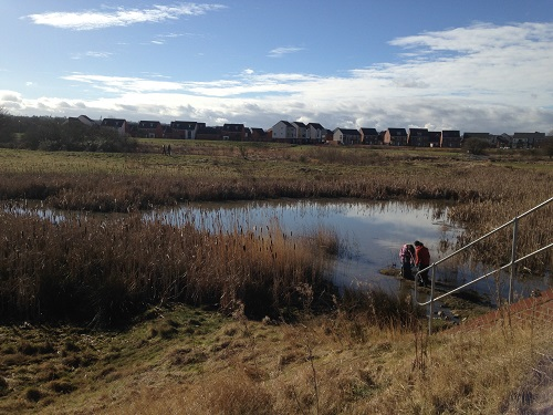 A photograph of sediment sampling in the Newcastle Great Park SuDS ponds