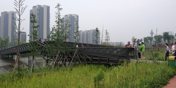 A photograph of the 2km long eco-corridor in central Ningbo, China.