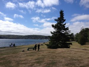 A photograph of greenspace meeting the ocean at Point Pleasant Park, Halifax
