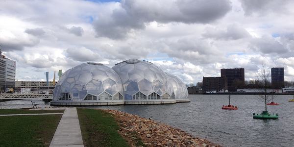 A photograph of The Floating Pavillion, Rotterdam