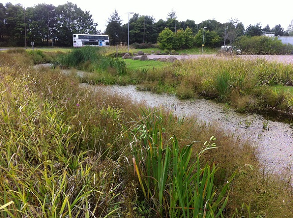A photograph of SuDS (sustainable drainage systems) at the Houston Industrial Estate, Edinburgh