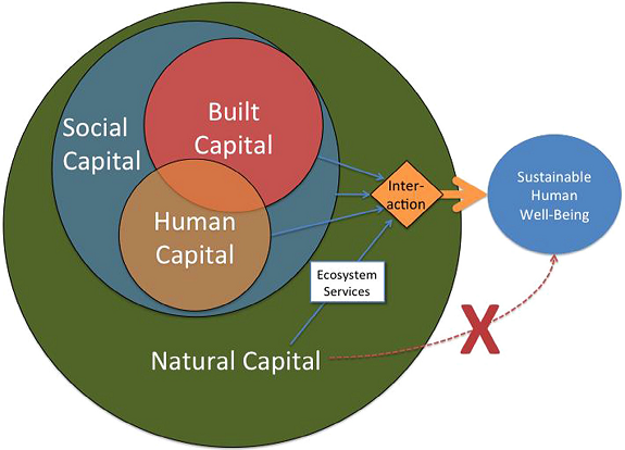 A diagram illustrating the interaction between built, social, human and natural capital. (Source: Constanza et al., 2017)