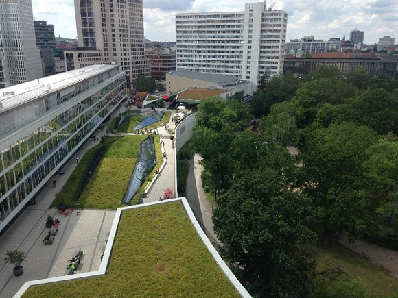 A photograph of green roofs and swales , exampels of nature based solutions that create natural capital.