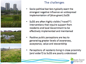 Silde from O'Donnell's presentation on implicit perceptions of SuDS