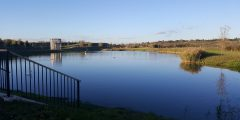 A photograph of a SuDS (sustainabel drainage system) pond in Cambridge