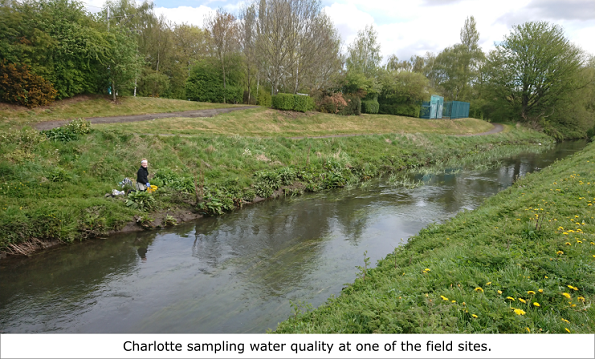 A photo of Charlotte sampling water quality at the side of the River Leen