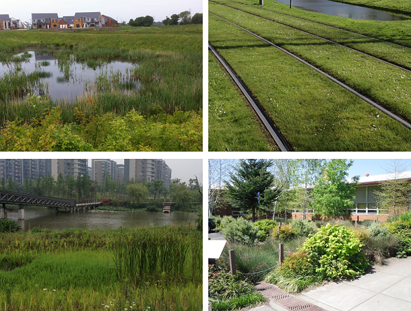 Figure 1. Blue-Green infrastructure in our four international case studies. From top left and clockwise: sustainable drainage pond in Newcastle, green tram tracks in Rotterdam, the Ningbo Eco-corridor, and a school raingarden in Portland.