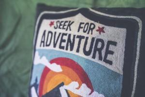 adventurepillow