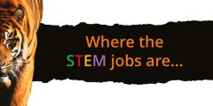 where the STEM jobs are