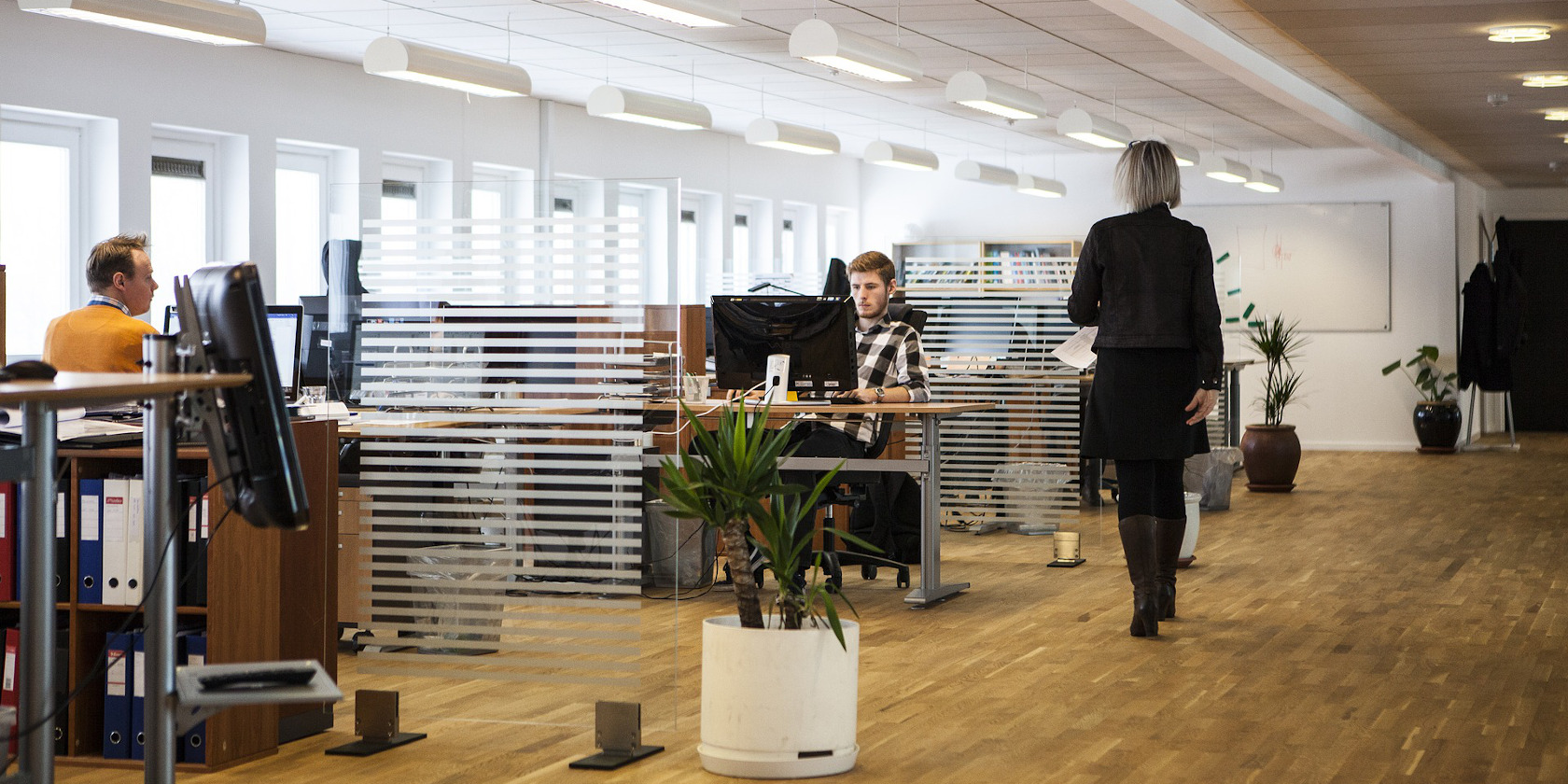 Modern office setting with staff working