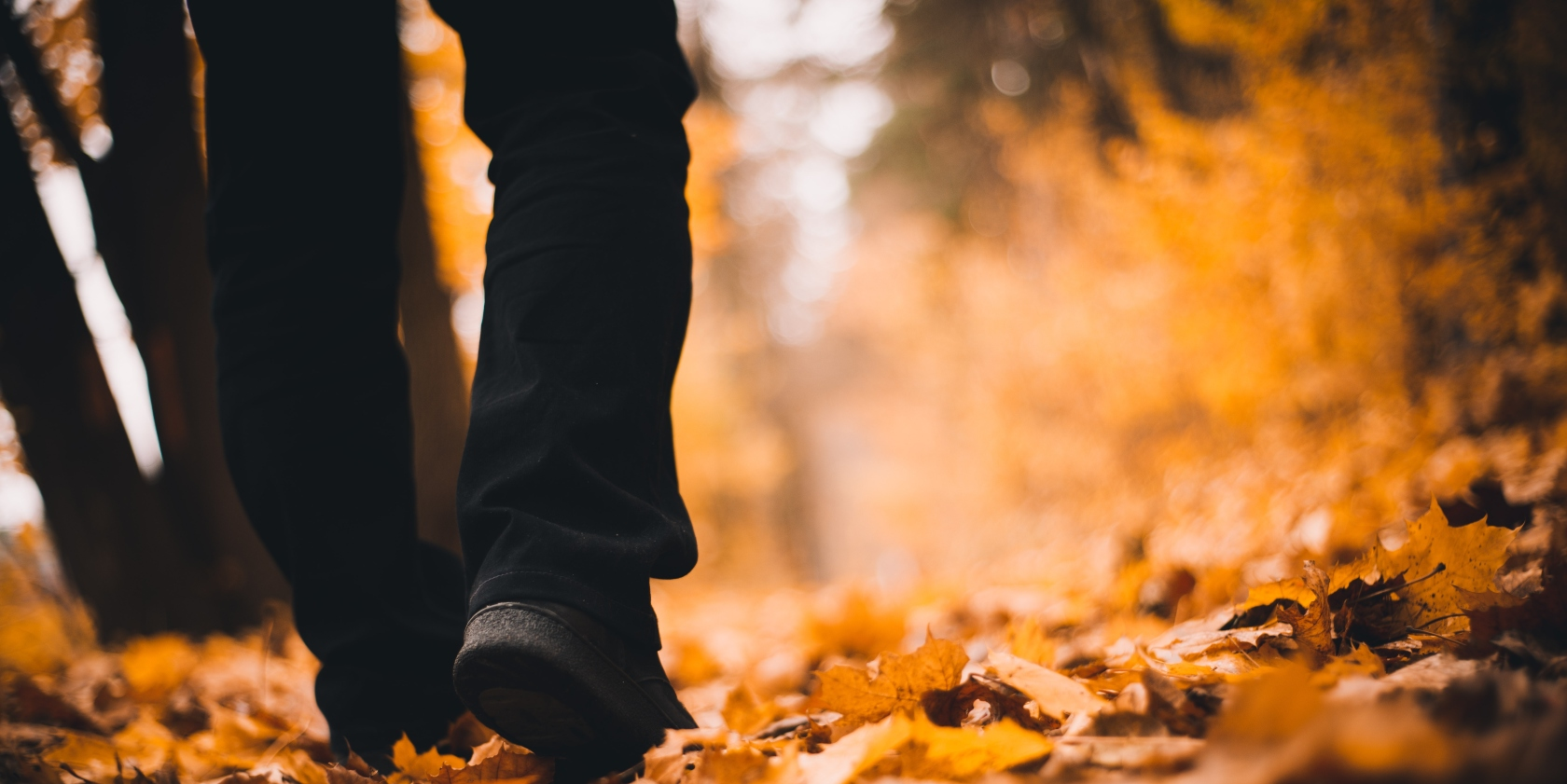 Man walking through autumnal leaves.