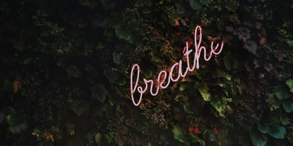 breathe text in pink on a leafy wall