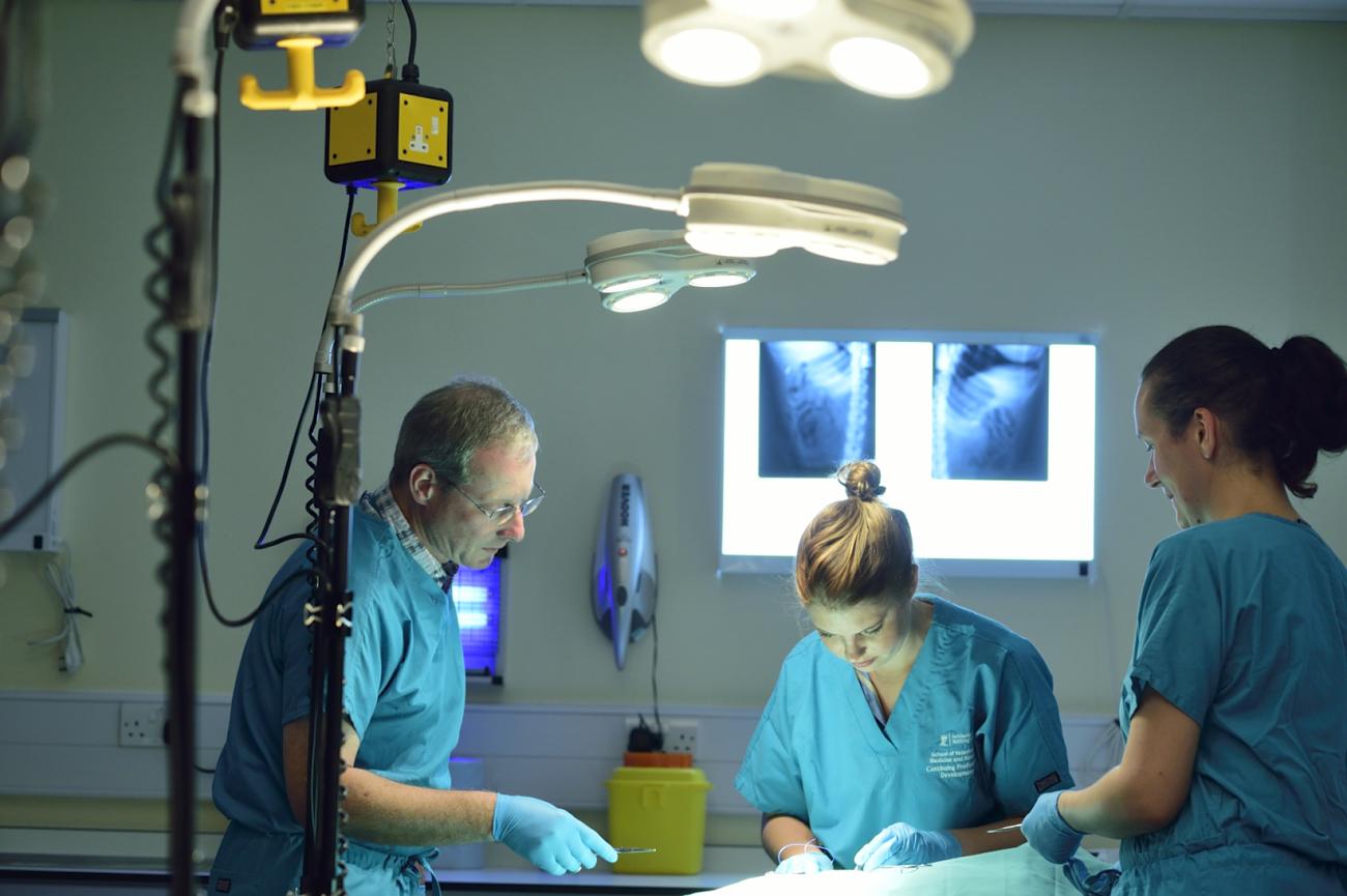 Veterinary Anaesthesia Clinical Case Scenarios