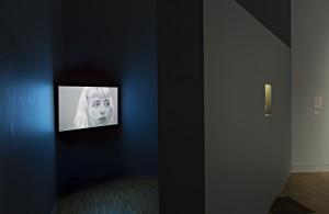 Model: installation shot by James E Smith