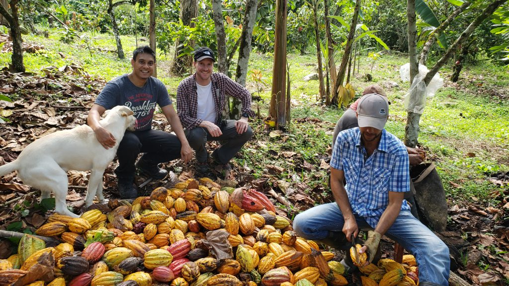 Chris Moore with colleagues sitting amongst cocoa pods