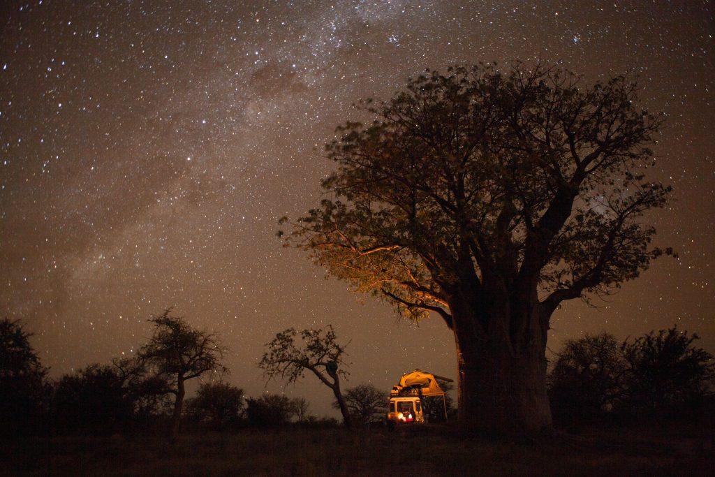 Landrover by baobab under stars