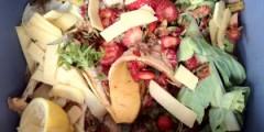Food-waste-4-420x210