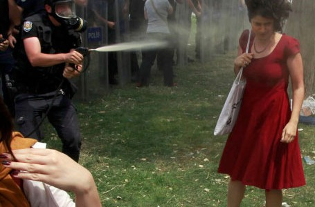 2013_protests_in_Turkey_,_Woman_in_Red_image