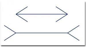optical illusion lines