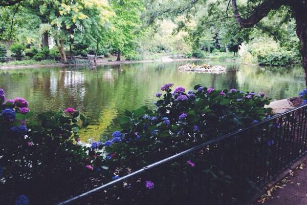 Arboretum 600x400