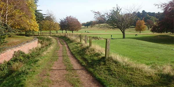 The Wollaton Park. It looks like the countryside, but it's just 10 minutes walk from the campus!