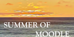 Summer of Moodle series of posts