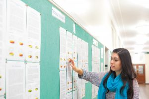 A student studying module noticeboards, Trent Building
