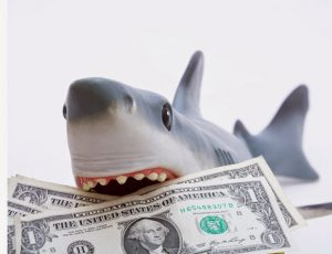 Picture of shark with money in it's jaws