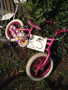 Susan's new bike