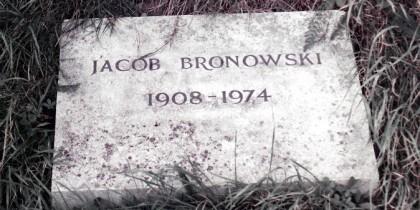 Bronowski-marker