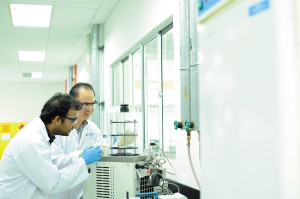 Freeze drying studies for food products