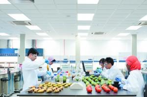 Food quality analyses