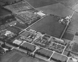 Sutton  Bonington campus showing the lime avenue,  c. 1950s - 1960s. (Ref: UMP/1/12/2)