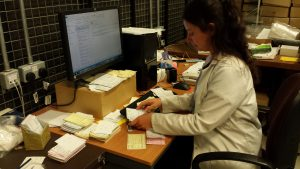 Store assistant typing statistics from piles of request slips into the computer
