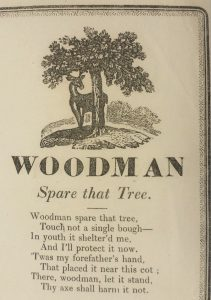 Lyrics to Woodman Spare That Tree, with engraving of a tree and a deer at the top